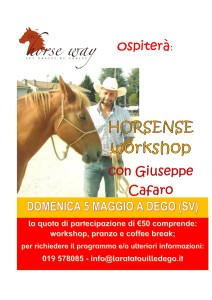 workshop horsense cafaro1